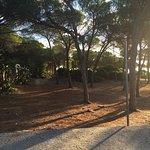 Photo de Club Hotel & Residence Le Palme