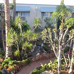 Travelodge Hotel LAX Los Angeles Intl Foto