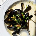 Great mussels