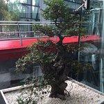 Hotel Eclat Beijing Foto
