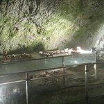 The Women's Cave ( Pestera Muierii )