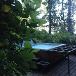 The hot tub sits a little way up from the water in the rainforest. Charming and ve
