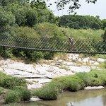 Rope bridge across the river
