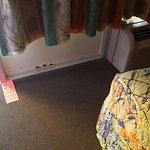 Foto de Ocean Plaza Motel