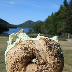 Wheat 3 seed bagel with spicy cilantro cream cheese at the Bubble mountains