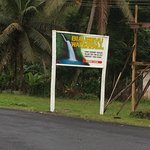 Biausevu Waterfalls sign on the side of the road