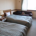 Big beds, large bathroom, separate toilet. Thin curtains and one no-curtain window let in the li