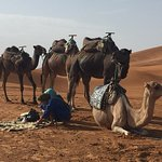 Photo of Viaje Por Marruecos - Private Day Tours