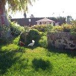 Bild från Villa Maria Pia