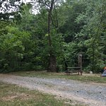 Foto de Gooney Creek Campground