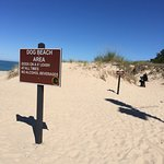 Photo de Warren Dunes State Park Campground