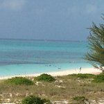 From our room you can see the protected reef near Coral Gardens. Terrific snorkeling right next