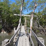 Photo of Parque Nacional Curu