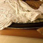The thin mattress
