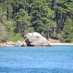 Nickerson State Park Campgrounds 사진
