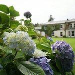 Photo de Currarevagh House