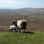 Atlantic Drive on Achill Island Foto