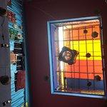 Rainbow Marrakech Hostel Foto