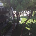 Bild från Hotel Mediterraneo