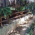 Foto de Hotel Okaan Restaurant