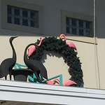 Miami Resort Motel Photo