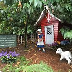 Foto de Enchanted Forest Theme Park