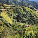 The Banaue Rice Terraces (Filipino: Hagdan-hagdang Palayan ng Banawe) are 2,000-year-old terrace