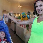 Photo de Coronado Beach Resort