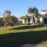 Kanga in the surrounding suburb