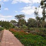 Photo de Ngorongoro Farm House, Tanganyika Wilderness Camps