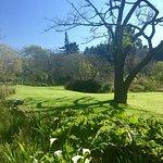 ภาพถ่ายของ Wildekrans Country House