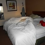 Baymont Inn & Suites Dubuque Resmi