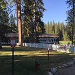 Photo of Big Trees Lodge