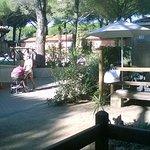 Photo of Il Gabbiano Camping Village