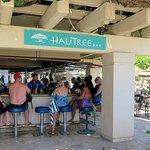 Photo of Hau Tree Bar