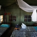 Selous Mbega Camp Picture