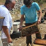 We visited a beekeeper