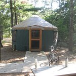 Nickerson State Park Campgrounds Picture