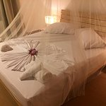 Camere (215471433)