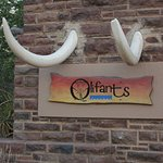 Einfahrt zum Olifants Restcamp