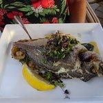 Fisch gegrillt