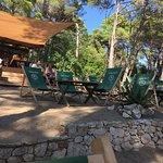Photo of Camping Cikat