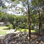 Photo de Sacred Cenote