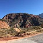 Foto de Parque Nacional Los Cardones