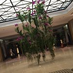 Always the flowers at four seasons are very special (entrance)