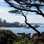 Foto de Black Rock Oceanfront Resort