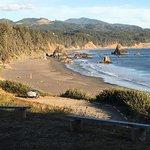 Foto de Castaway By the Sea