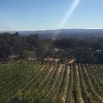 Photo de Paradise Ridge Winery