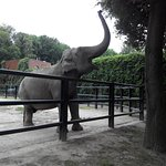 Photo of Krakow Zoo (Ogrod Zoologiczny)