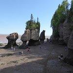 Blick zu den Felsen